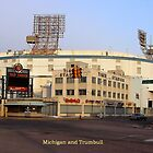 Michigan and Trumbull by jhell2