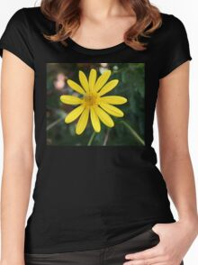 Yellow Daisy with green Bug Women's Fitted Scoop T-Shirt