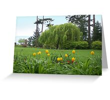 Spring Tulips in the Park Greeting Card