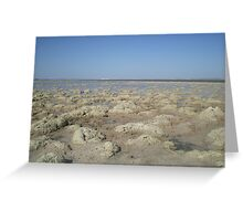 Salty Plains Greeting Card