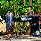 """Silence of the Singer"" by Phil Thomson IPA"