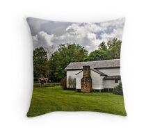 Spring in the Cove II Throw Pillow