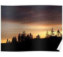 Sunset Above The Forest Poster