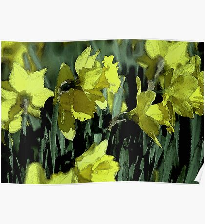 Abstract Daffs Poster