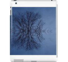 Snowflake? iPad Case/Skin
