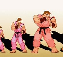 The Evolution of Dan, Street Fighter by endgameendeavor