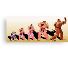 The Evolution of Dan, Street Fighter Canvas Print