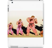 The Evolution of Dan, Street Fighter iPad Case/Skin