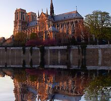 Notre Dame reflections by dags