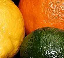 Citrus Crop by lisa1970