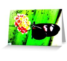 Butterfly Plasma Greeting Card