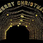 Christmas Lights at Our Lady Of The Snows by barnsis