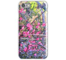 "Blossoms On ""Barbed Wire"" iPhone Case/Skin"