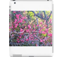 "Blossoms On ""Barbed Wire"" iPad Case/Skin"