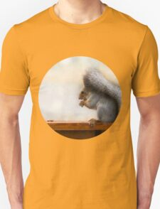Squirrel on a bench and some nuts T-Shirt