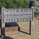 Cape point by Beth Furnell