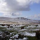 Dartmoor national park by brucemlong