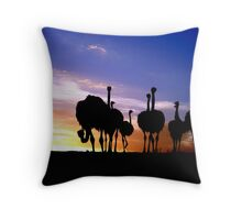 Pecking Order Throw Pillow