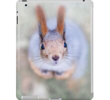 Squirrel looks at you from the bottom up iPad Case/Skin