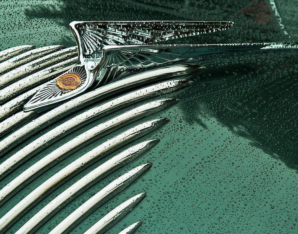 Water Wings by James Howe