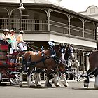 Colonial Brewing Co - Parade by Wendy  Slee