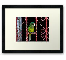122514 flys the coup Framed Print