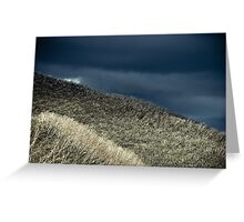 Grey forest Greeting Card