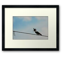 """Who's the Better Fisherman? Man or Bird?"" Framed Print"