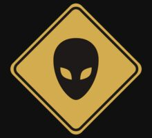 Alien Head Road Sign by ecaggiani