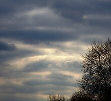 Cloud roll by Judi Taylor