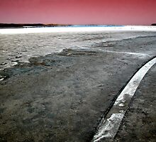 Salt Lake, the Coorong, South Australia by Roz McQuillan