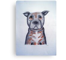 Buffy the Staffordshire Bull Terrier Canvas Print