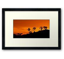 A Warm Evening  Framed Print