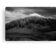big hill little peak........daniland Canvas Print
