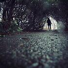 Wandering by Rebecka Wärja