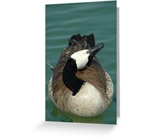 Oh No,Not Another Picture!!!!! Greeting Card