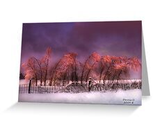 """ Iced Pink "" Greeting Card"