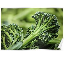 Portland Farmers Market Broccoli Poster