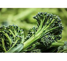 Portland Farmers Market Broccoli Photographic Print
