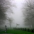 Walking into the Mist by Robin D. Overacre