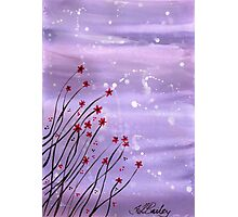 Starlit Flowers Photographic Print