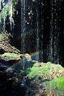Waterfall Rainbow by Ern Mainka