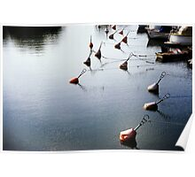 Tranquil Harbor Poster