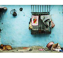 Domestic Photographic Print