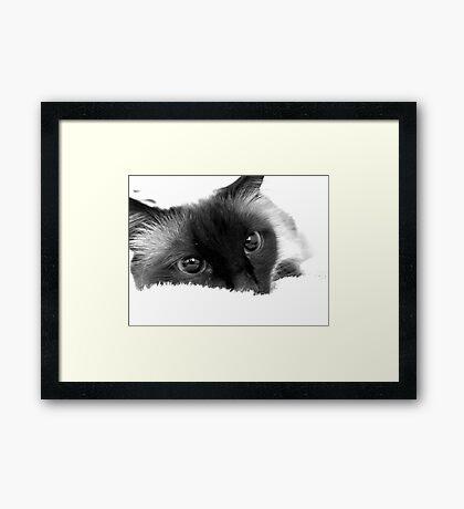 B&W Framed Print