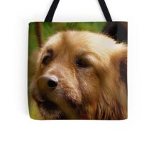 Behind the barrs Tote Bag