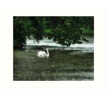 Swan Lake Art Print