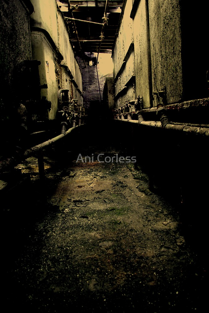 Dank Basement by Ani Corless