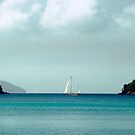 Sailboat Near Horizon by Mark Ross