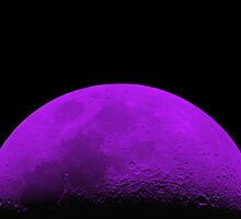 Half Moon by Robert O'Neill